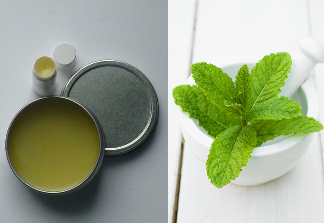 0 Natural Ways To Get Plump Lips Make Your Lips Bigger Mint Lip Balm Faces Of Ony