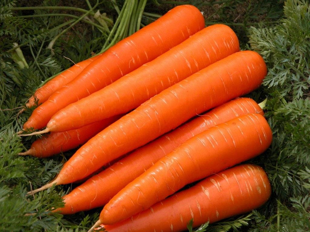 Carrots Top Vegetables Natural In Antioxidants
