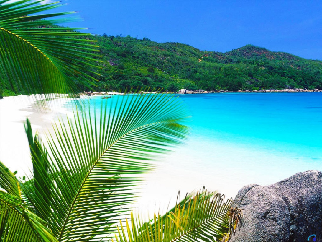 Praslin Beach vacation